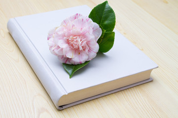 camellias with book