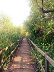 sentiero nel verde dell'oasi di Farfa