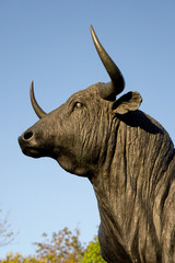 El Toro de Lidia, Ronda