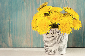 Dandelions in a pot on a white blue wooden background