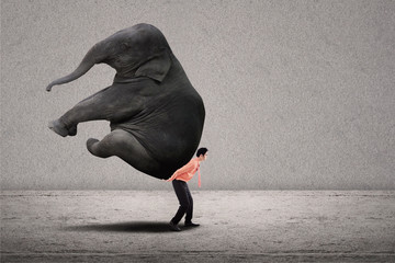 Business leader lifting elephant on grey