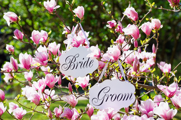 Bride and groom deco boards hanging on a blooming magnolia tree