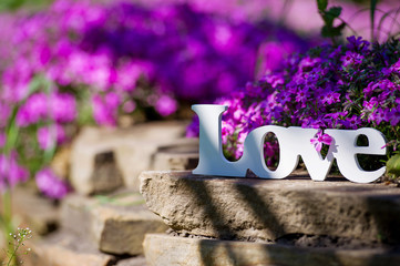 Love sign in the garden with beautiful purple flowers