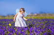 Adorable toddler girl in fairy costume in flower field