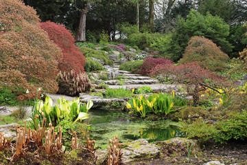 Rockery area in an English garden