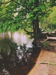 Flussufer
