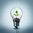 ecological idea - plant in lamp - 64257813