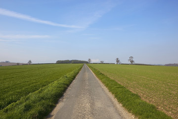 agricultural country road
