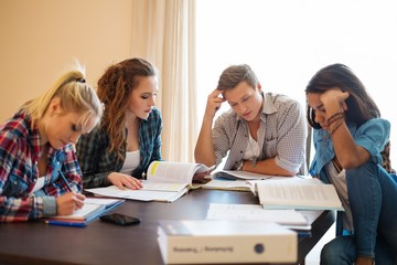 Group of students preparing for exams in apartment
