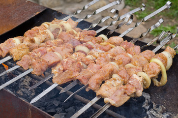 Kebabs cooking over a hot barbecue fire
