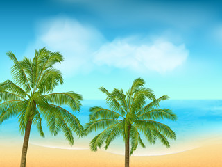 summer sea and palm tree background landscape