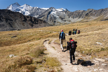 walkers in Swiss Alps