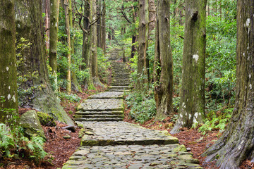 Kumano Kodo, Sacred Trail in Wakayama, Japan