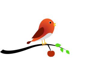 Bird and apple