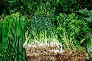 Fresh Green Vegetables in markets