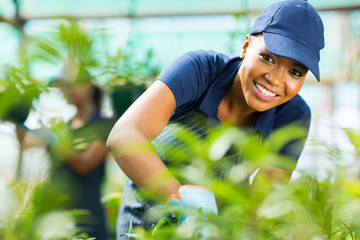 young african female nursery worker working in greenhouse