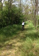 pedalata tra la natura