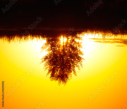 Leinwanddruck Bild reflected in the ode