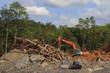 Leinwandbild Motiv Deforestation in Malaysia for oil palm plantations