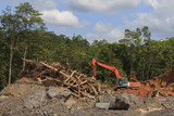 Deforestation in Malaysia for oil palm plantations