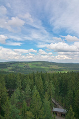 Lipno - tree top walk view