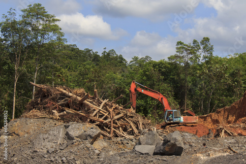 Deforestation in Malaysia for oil palm plantations - 64284852