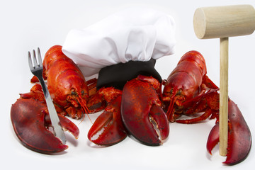 Cooking Lobsters