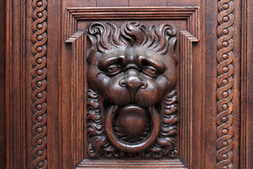 Lion on a wooden door