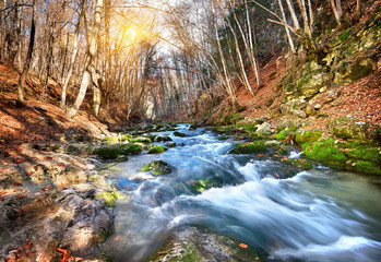 Mountain river © Givaga