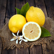 Frische Zitronen