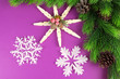 Beautiful snowflakes with fir branch on purple background