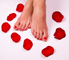 Spa background with a beautiful legs, flowers, petals