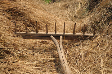 Wooden rake for hay