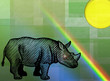 Rhinocéros et arc-en-ciel