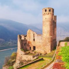 Burg Ehrenfels über dem Rhein bei Rüdesheim