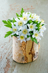 Spring wild flowers in a wooden cup