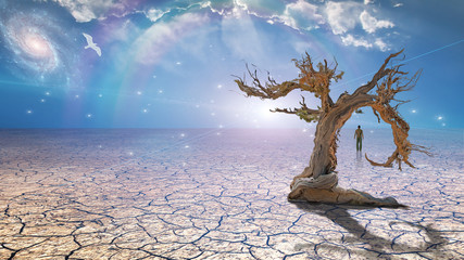 Wanderer on dried desert mud