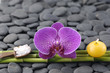 Spa still life with orchid with candle and grove