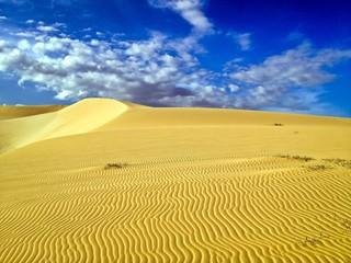 Desert Arid Landscape, White Sand Dunes, Mui Ne, Vietnam, Asia