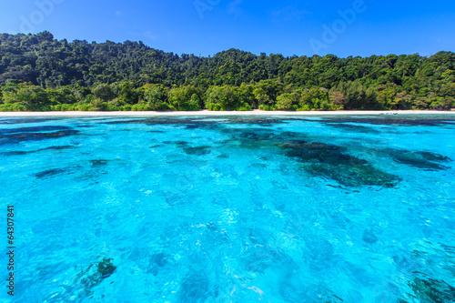 Foto op Canvas Groene koraal Beach of tropical crystal clear sea, Ta Chai island