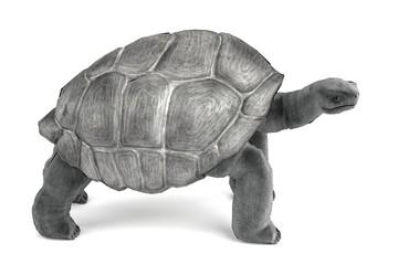 realistic 3d render of geochelone nigra