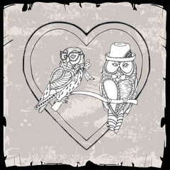 pair of owls in heart frame