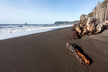 Olympic state park pacific shoreline, Washington state