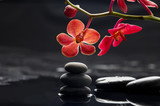 Fototapety Still life with branch red orchid with therapy stones