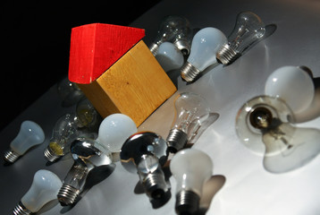 Light bulb and toy house.