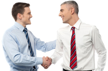 Smiling businessmen shaking hands