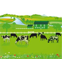 Felder und Landwirtschaft