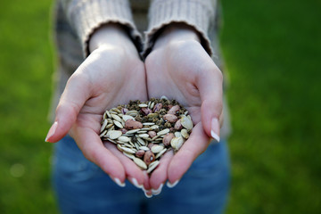 Closeup portrait of a female hands holding seeds