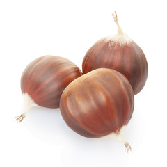 Chestnuts group on white, clipping path