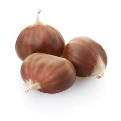 Chestnuts on white, clipping path included